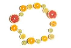 Besnoeiingscitrusvruchten van verschillende die kleuren op wit worden geïsoleerd Gesneden citroen, sinaasappel, kalk en grapefrui Stock Fotografie