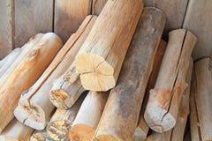 Besnoeiingshout in de bossen. Stock Foto