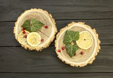 Besnoeiingshout met met plakken van citroen en granaatappelbessen Royalty-vrije Stock Afbeelding