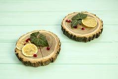 Besnoeiingshout met met plakken van citroen en granaatappelbessen Stock Foto