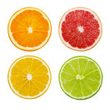 Besnoeiingsplakken van kalk en citroen, oranje, roze die grapefruit op witte achtergrond wordt geïsoleerd Stock Fotografie
