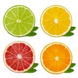Besnoeiingsplakken van kalk en citroen, oranje, roze die grapefruit op witte achtergrond wordt geïsoleerd Knippende weg Stock Foto
