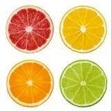 Besnoeiingsplakken van kalk en citroen, oranje, roze die grapefruit op witte achtergrond wordt geïsoleerd Knippende weg Stock Foto's