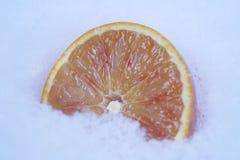 Besnoeiingssinaasappel in de sneeuw vruchten in de winter stock foto