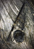 Besnoeiingstakje op oud hout Stock Afbeeldingen