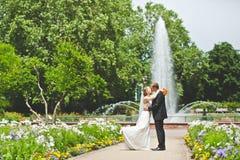 Beso atractivo del novio y de la novia Foto de archivo