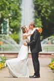 Beso atractivo del novio y de la novia Fotos de archivo