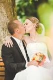 Beso atractivo del novio y de la novia Imagen de archivo
