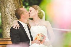 Beso atractivo del novio y de la novia Imágenes de archivo libres de regalías