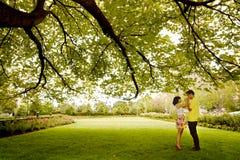 Beso bajo el árbol verde Imagen de archivo