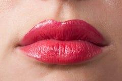Beso caliente Imagen de archivo libre de regalías
