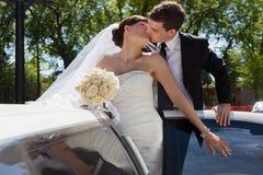 Beso de los pares de la boda Imagenes de archivo