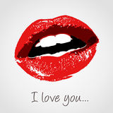 Beso del amor Fotos de archivo