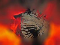 Beso del fuego Fotografía de archivo