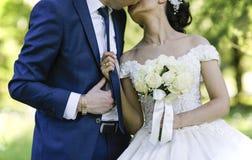 Beso del novio y de la novia Imágenes de archivo libres de regalías