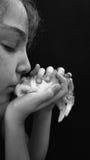 Beso dulce Imagen de archivo libre de regalías