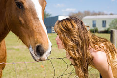 Beso para el caballo Fotografía de archivo libre de regalías