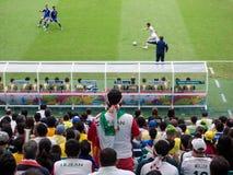 Besorgter der Iran-Fan-aufpassendes Weltcup-Anpassung an Bosnien-Herzegowina Lizenzfreie Stockfotografie