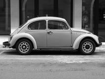 Besouro amarelo de Volkswagen Fotografia de Stock
