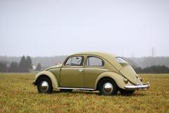 Besouro 1957 da VW Imagem de Stock