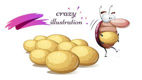 Besouro de Colorado engraçado, bonito, louco Ilustração da batata Imagens de Stock Royalty Free