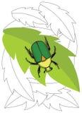 Besouro em uma folha ilustração stock