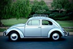 Besouro 1956 oval da janela da VW Fotos de Stock Royalty Free