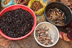 Besouros de Fried Insect no mercado local de cambodia foto de stock