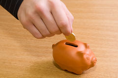 Besparing-doos   Stock Foto