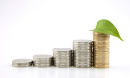 Besparingen, stijgende stapel muntstukken en blad Stock Foto