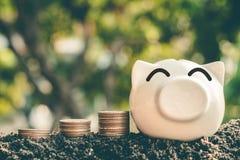 Besparingsgeld in varkensbank voor toekomstig gebruik, het geld van de Conceptenbesparing voor de toekomst royalty-vrije stock afbeeldingen
