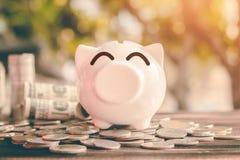 Besparingsgeld in varkensbank voor toekomstig gebruik, het geld van de Conceptenbesparing voor de toekomst stock afbeeldingen