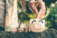 Besparingsgeld in varkensbank voor toekomstig gebruik, het geld van de Conceptenbesparing voor de toekomst stock afbeelding
