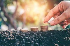 Besparingsgeld voor de toekomstige duurzaamheid, het geld van de Conceptenbesparing voor de toekomst stock foto