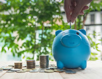 Besparingsmuntstukken voor de zaken en de financiën van het investeringsconcept Stock Foto's