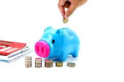 Besparingsvarken met geld en calculator Stock Fotografie