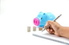 Besparingsvarken met geld en calculator Stock Foto's