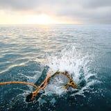 Bespattende vismand in het overzees bij dageraad Royalty-vrije Stock Foto