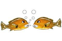 Bespreking 3 van vissen Royalty-vrije Stock Foto