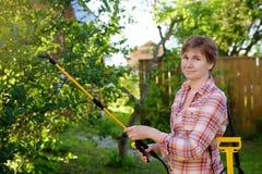 Besprutar den caucasian kvinnan för den mellersta åldern träd mot plågor, ohyra eller sjukdomväxter arkivfoton