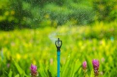 Besprutat vatten från spridaren fotografering för bildbyråer