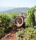 Bespuitend de wijngaardgebied van de tractor Stock Fotografie