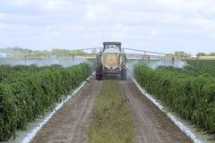 Bespuitende Pesticiden - 1 Royalty-vrije Stock Afbeeldingen