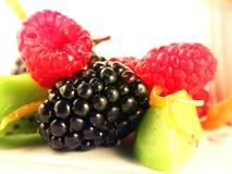 Bessen met vruchten Royalty-vrije Stock Fotografie