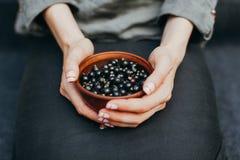 Bessen van zwarte bes in platen in vrouwelijke handen Vitaminen en gezond het eten concept stock afbeelding