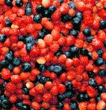 Bessenachtergrond van aardbeien en bosbessen stock foto's