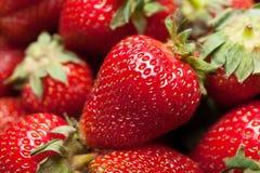 Bessendoos, heerlijk aardbeidessert stock afbeeldingen