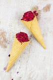 Bessenijs met kaneel en yoghurt Royalty-vrije Stock Fotografie