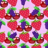 Bessenpatroon Vruchten schets van verse framboos en kers Stock Illustratie