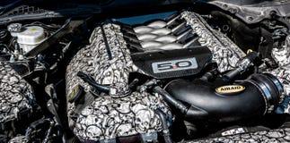 Beställnings- Ford Mustang motor arkivbild